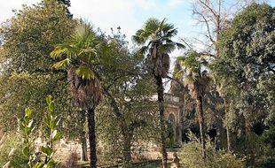 Dix jardiniers sont au chevet des 3000 espèces différentes du Jardin des plantes.