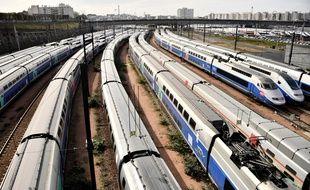 Des TGV en gare de Lyon à Paris (image d'illustration).