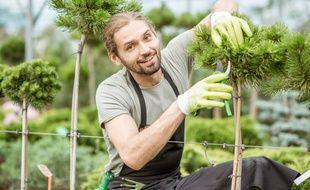 Si le jardinage est un plaisir pour certains, c'est aussi une corvée pour d'autres. Heureusement, les petits travaux de jardin sont éligibles à un crédit d'impôts de 50 %.