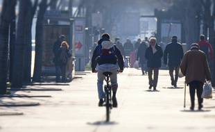 Les cyclistes marseillais n'ont pas fini de slalomer entre les voitures.