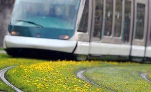 La Communauté urbaine de Strasbourg (CUS) a lancé un projet de tramway sur pneus qui alimente une vive polémique, ses adversaires l'accusant d'avoir choisi sans véritable concertation un mode de transport dont rien ne démontrerait qu'il soit le plus adapté.