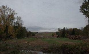 De nombreux arbres ont déjà été coupés sur le tracé du projet autoroutier du GCO, comme ici sur le site de l'ancienne Zad de Kolbsheim. Illustration