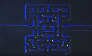 Fin juin 2016, des chercheurs norvégiens de l'University College of Southern Norway (Nottoden) ont recréé un labyrinthe qui ressemble au jeu Pac-Man et dans lequel ils ont placé des micro-organismes. La vidéo de leurs travaux a déjà été vue plus de 300.000 fois.