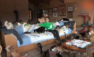 Elle vit avec 1100 chat ! - Le Rewind (video)
