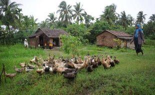 Dans les campagnes birmanes, obtenir un prêt pour des semences ou du matériel est une vraie gageure. Mais le décollage espéré du microcrédit devrait aider à pallier les déficiences d'un système financier rudimentaire et à lever un obstacle majeur au développement du pays.