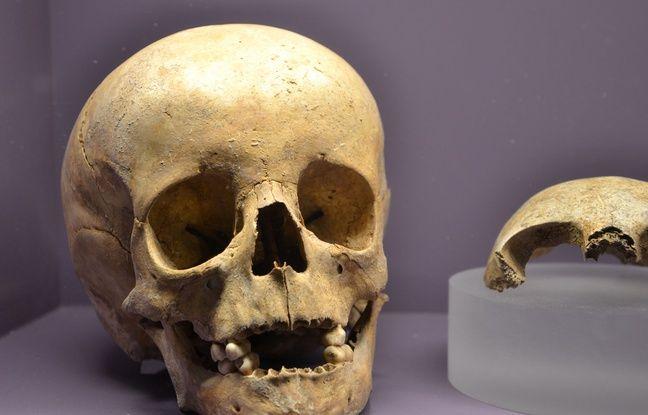 Un crâne d'enfant découvert lors des fouilles archéologiques à Aimargues.