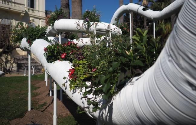 Les jardins éphémères resteront en place jusqu'au 28 avril
