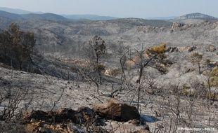 Plus de 10 hectares sont partis en fumée du côté de Trèbes.