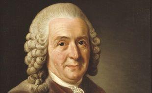 Le naturaliste suédois, Carl von Linné.