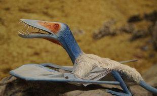 Image de synthèse de ptérosaure, ces reptiles volants du Jurassique.