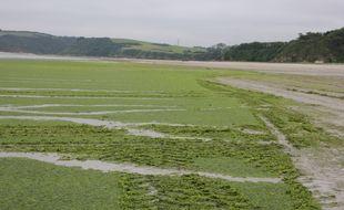 La plage de la Grandville, à Hillion, ici recouverte d'algues vertes en juin 2021.