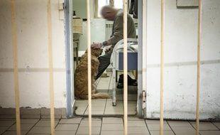 Vanie, un golden retriever, vient en aide de détenus en difficulté lors de séances de zoothérapie au centre pénitentiaire de Château-Thierry.