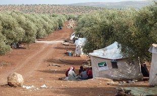 Le 9 octobre 2012, des réfugiés s'abritent sous des oliviers à proximité d'Idleb, proche de la frontière turque.