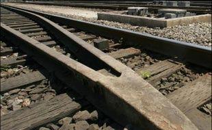 Des rails de train en République démocratique du Congo (illustration).