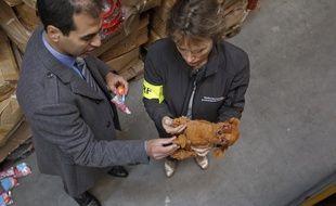 Des agents de la DGCCRF opèrent une saisie dans un entrepôt à Paris, en 2013.