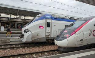 Deux trains à quai dans la gare de Toulouse (illustration).