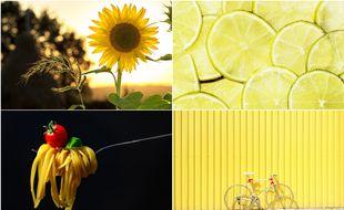 la vie en jaune.