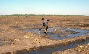 Sécheresse, changement climatique et utilisation de l'eau par l'homme font rétrécir le lac Tchad qui fait l'objet d'un forum international de vendredi à dimanche à N'Djamena rassemblant des dizaines de dirigeants, experts et spécialistes de l'environnement.