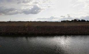 Des rizières à proximité de la centrale nucléaire de Fukushima, le 23 mars 2011
