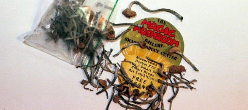 """Les """"champignons magiques"""" ne deviennent néanmoins pas techniquement légaux."""