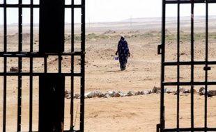 Le Mouvement pour l'unicité et le jihad en Afrique de l'Ouest (Mujao), qui retient en otage une Espagnole et une Italienne enlevées avec un autre Espagnol en octobre 2011 en Algérie, a exigé une rançon de 30 millions d'euros pour libérer les deux femmes, a déclaré mercredi à l'AFP un de ses porte-parole.