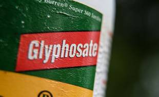 This picture taken on September 09, 2019, shows a bottle of weedkilling containing glyphosate in Lille, northern France. (Photo by DENIS CHARLET / AFP)
