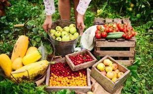 En été, à vous les mets fruités et sucrés. Mais si vous trouvez des tomates en hiver, c'est qu'il y a un souci quelque part. Ce n'est pas la saison de la soupe pour rien