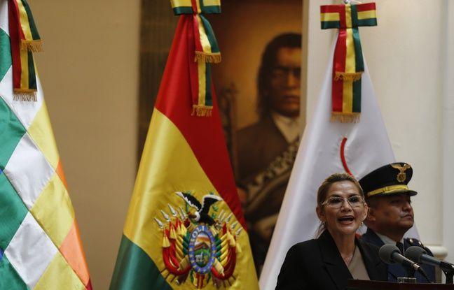 Bolivie : L'ONU déplore la hausse de 10 % des plantations de coca en 2019