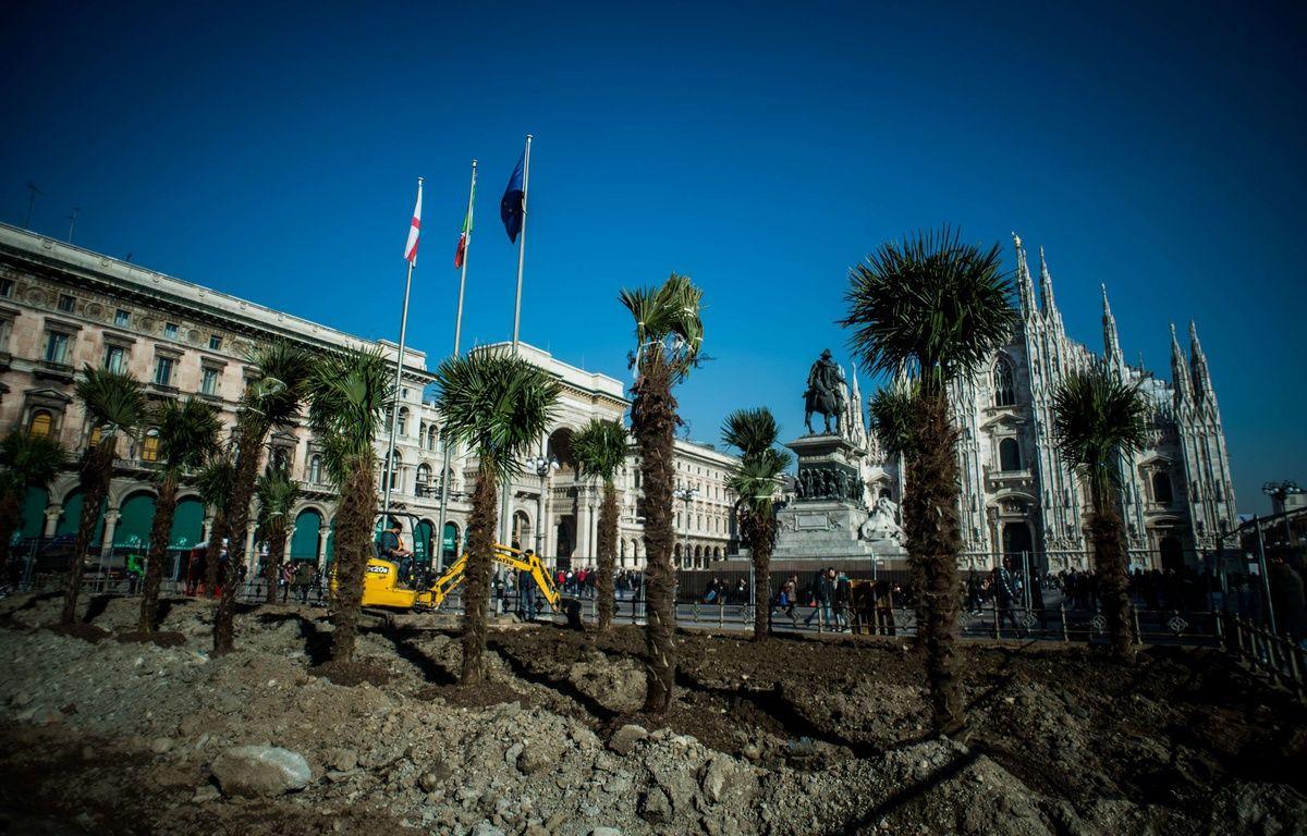 Des palmiers plantés devant le duomo – NICOLA MARFISI/AGF/SIPA