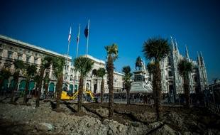 Des palmiers plantés devant le duomo