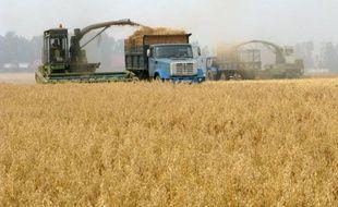 La Russie pourrait limiter ses exportations de céréales si les prix continuent à augmenter sur son marché intérieur, a dit vendredi le ministre russe du Développement économique, évoquant pour la première fois un éventuel embargo, un scénario exclu jusqu'alors par Moscou.