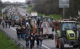 La manifestation du 9 janvier 2016 contre l'aéroport de Notre-Dame-Des-Landes