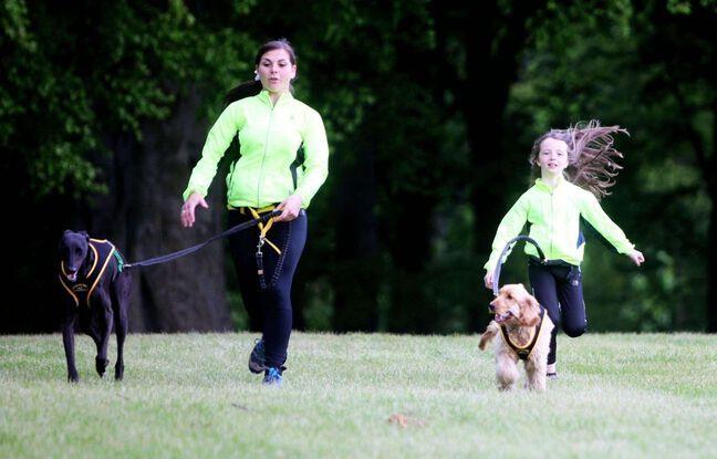 Le canicross peut se pratiquer très jeune avec, forcément, un chien adapté à l'enfant.