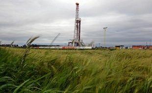 L'Etat avait-il le droit d'interdire en juillet 2011 la fracturation hydraulique pour fermer la porte aux gaz de schiste? Le Conseil constitutionnel devrait bientôt être saisi de cette question explosive