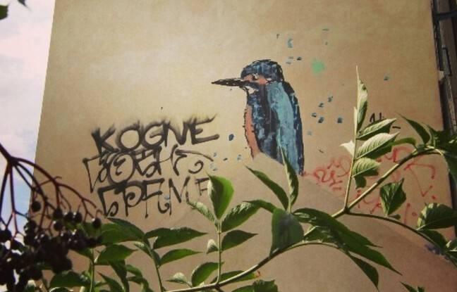 A Rennes, les animaux du street-artist War sont nombreux et bien connus des habitants.