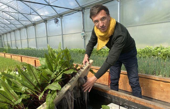Thomas Boisserie, Président de l'entreprise Les Nouvelles Fermes, veut développer à Mérignac l'une des plus grandes fermes en aquaponie d'Europe.