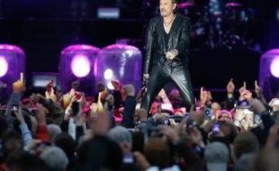 Le chanteur Johnny Hallyday lors d'un concert à Namur, le 23 juin 2013