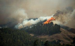 Près de 5.000 personnes ont été évacuées d'une zone touristique de l'île espagnole de Grande Canarie en raison d'un incendie de forêt qui a ravagé quelque 3.400 hectares.