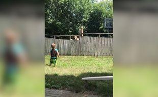Instant tendresse avec cette partie de balle entre un enfant et un chien - Le Rewind (video)