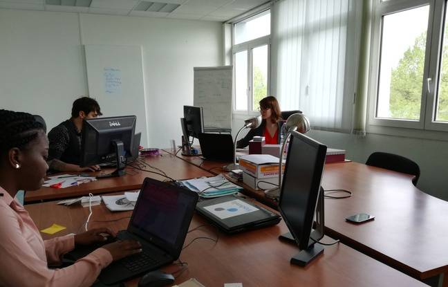 A Entzheim, les salariés de Freshmile gèrent, en plus du développement de l'interface numérique, les services, notamment téléphoniques, à destination des usagers des bornes.