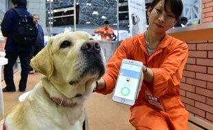 Un chien porte un appareil équipé de capteurs de la société japonaise Anicall censé analyser ses émotions, à Tokyo, le 13 janvier 2016.