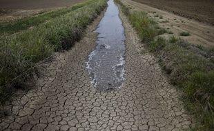 Illustration: La sécheresse dans une ferme en Californie.