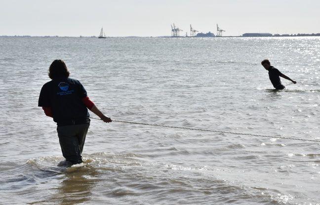 C'est la première opération d'échantillonnage réalisée sur le parc naturel marin.