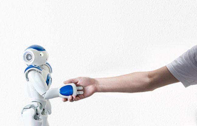 Zorabots, une entreprise belge à la pointe de la robotique