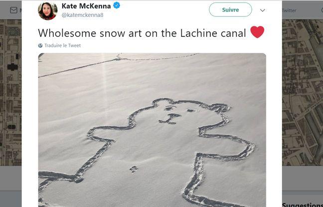 Le dessin de l'ours est partagé sur les réseaux sociaux, pour tenter de percer le mystère.
