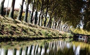 A bord d'une péniche sur le canal du Midi à côté des Allées de Barcelone, à Toulouse.