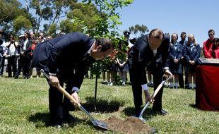 François Hollande et Tony Abbott, le Premier ministre australien, plantent un arbre à Canberra, en mémoire des soldats australiens tombés en Europe.