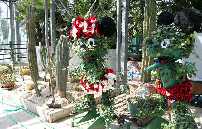 Des topiaires en lierre et des cactus attendent leur tour d'entrer en scène.