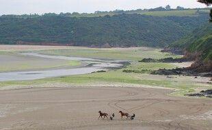 La plage de la Grandville, à Hillion, est toujours le théâtre d'échouages d'algues vertes au printemps.
