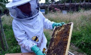 Un apiculteur nantais le 10 juin 2015